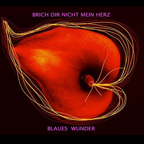 Cover Blaues Wunder